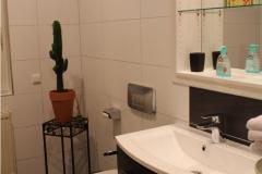 eines-der-kleinen-baeder-je-og-und-eg-mit-offener-dusche